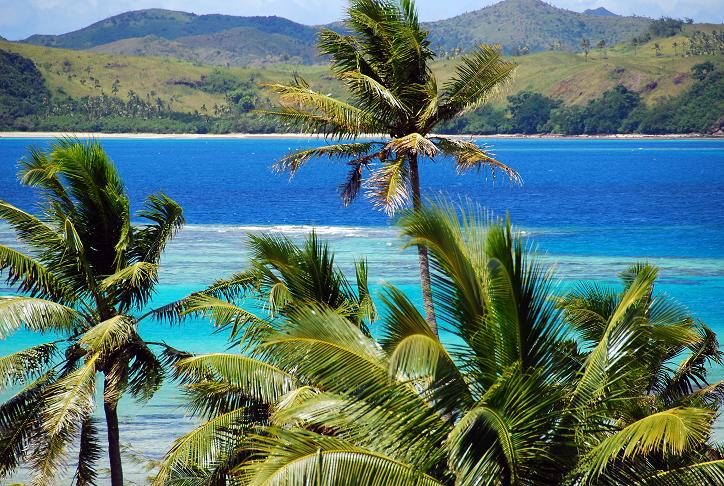 China's assistance greatly benefits South Pacific Island states: Fijian economist